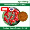 Extracto el 80% Ginsenosides de la baya del Ginseng de Panax