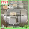 Y Series Three-Phase Motor, Y Motor