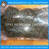 Larvas de farinha liofilizadas para o pássaro selvagem