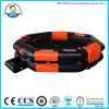 Pessoa inflável Abrir-Reversível aprovada do Liferaft 10 do Ce