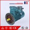 Motor assíncrono trifásico com regulamento da velocidade da conversão de freqüência