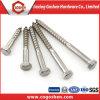 Vis en acier inoxydable DIN571