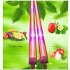 Ce RoHS 1.2m 18W Tube LED Grow Light di integrazione