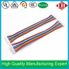 10 Pin pH2.0 Housing UL1007 Ribbon Wiring Harness