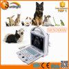 Escáner Ultrasonido Veterinario Portátil Portátil / Precio Ecografo Animal Ecografo Dispositivo Veterinario de Ultrasonido