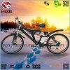 Vélo de montagne électrique de vente chaude avec la pleine suspension
