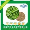 EGCG 95%の茶エキスの粉のエピカテキン