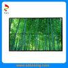 IPS 10.1  600CD/M2 광도를 가진 1280년 (RGB) X 720p LCD 디스플레이 (PS101IA-07A)