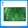 IPS 10.1  1280 (RGB) X 720p LCD Vertoning met Helderheid 600CD/M2 (PS101IA-07A)