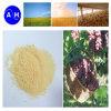 Ácido aminado Hydrolysed feijão de soja 80% 13-0-0 do ácido aminado 80%
