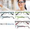 Manier Eyewear van de Glazen van het Frame van het Schouwspel van de groothandelaar de Optische