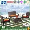 Rattan del PE & mobilia dell'alluminio per il sofà esterno (TG-1300)