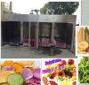 Secadora de la fruta del acero inoxidable/secador industrial de la fruta/secadora vegetal