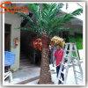屋内装飾的な常緑の人工的なヤシの木