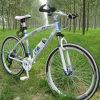 Bicicleta de montanha fresca da bicicleta da alta qualidade MTB para a venda