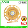COB 100W Explosionproof LED Light con 5 Years Warranty