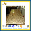 New Venetian Gold Granite Kitchen Countertop for Home Hotel