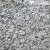 Flooring及びWall (MT008)のための磨かれたSwan White Granite Tiles