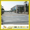 G654/G682/G684 Granite Flamed Paving Tile/Pavingstone pour Landscape Project