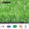Herbe artificielle saine de fournisseur de la Chine