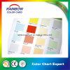 Impressão valiosa do folheto do cartão da cor da boa qualidade