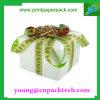 De mooie Doos van de Gift van het Karton van Kerstmis Verpakkende