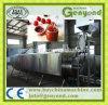 Machine de développement de sauce tomate
