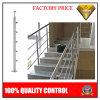 Acero inoxidable Barandilla de escalera con la barra de escalera o balcón (JBD-B002)