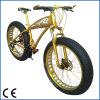 رجال يبرّدون 26 '' *4.0 جبل نوع ثلج درّاجة مع إطار سمين درّاجة سمين ([أكم-941])