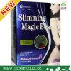 적절한 체중을 줄이는 마술 콩, 바디 셰이퍼 제품