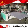 China-Hersteller-Plastikausschnitt-Maschine (BX-FQ)