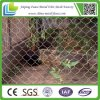 Home Use를 위한 비용 효과성 긴 Lasting Chain Link Fence