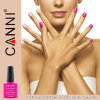 Art Nail Cosmetics #30917W Nail Art Gel Polish 2015 Canni Factory Wholesale 7.3ml 207colors Soak off UV LED Nail Gel Polish