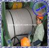 Bobine de vente chaude de l'acier inoxydable 304