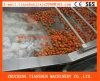 Ozon-Sterilisation-Frucht-Gemüse-Waschmaschine Tscq-5000