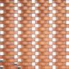 La parete interna decora il mosaico di vetro dorato di arte (VMW3659)