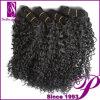 Человеческие волосы 100% скручиваемости нового прибытия Jerry (GP-BRJC-G01235)