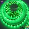 Striscia del LED/striscia flessibile del LED (GRFT1000-60X 5050)