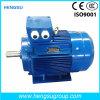 Motor eléctrico de la inducción Squirrel-Cage asíncrona trifásica de la CA de Ye3 200kw-8p para la bomba de agua, compresor de aire