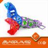 회전 관람차 Magformers 장난감/자석 건축 세트