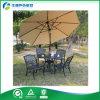 Venta caliente todos los muebles al aire libre de /Garden del bastidor de aluminio de la alta calidad de las estaciones (FY-018ZX)