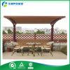 Pérgola de madera plástica del jardín del HDPE de los muebles de los muebles de madera del jardín (FY-043B)