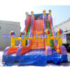 PVC Inflatable Water Slides de la alta calidad en Children