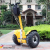 高品質の中国のスクーター(V6+)のバランスをとっている電気一人乗り二輪馬車の自己