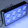 Diodo emissor de luz Aquarium Cora Reef Light do diodo emissor de luz 8 para Coral Grow