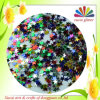 Animal familier Polyester Glitter Powder pour Crafts (LB100)