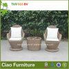 H chaise en aluminium de rotin de la Chine sans coussin