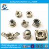 재고 Stainless Steel Square 또는 Weld/Wing/Flange/Cap/Cage/Nylon Locknut (DIN315 DIN928 DIN929 DIN1587 DIN985 DIN6923)