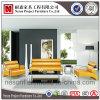 Nuovo sofà del salotto della presidenza di svago del cuoio di disegno (NS-KJ808)