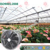 Sale caldo Ceiling Type Exhaust Cooling Fan per Flowers